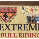 Bull Riding_640x346